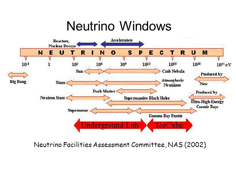 Neutrino Windows Neutrino Facilities Assessment Committee, NAS (2002)