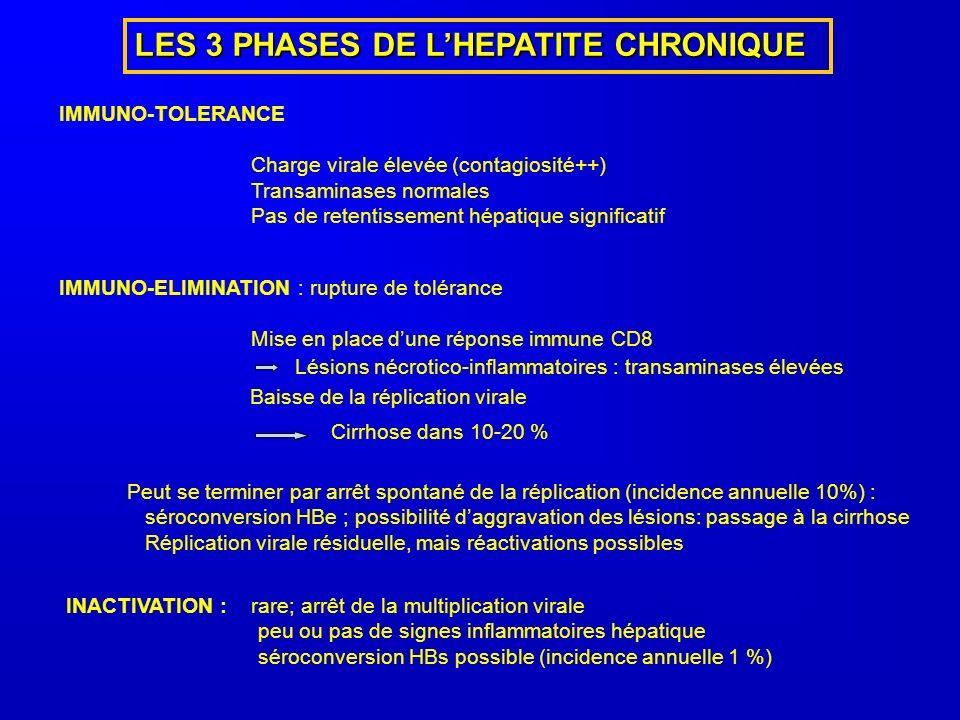LES 3 PHASES DE L'HEPATITE CHRONIQUE