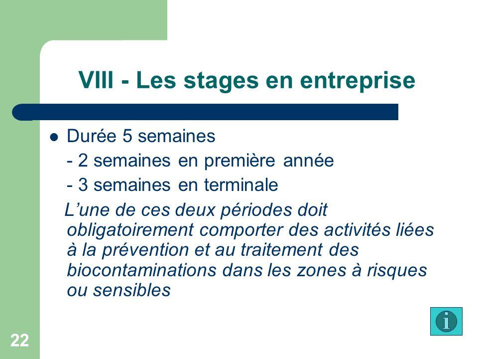 VIII - Les stages en entreprise