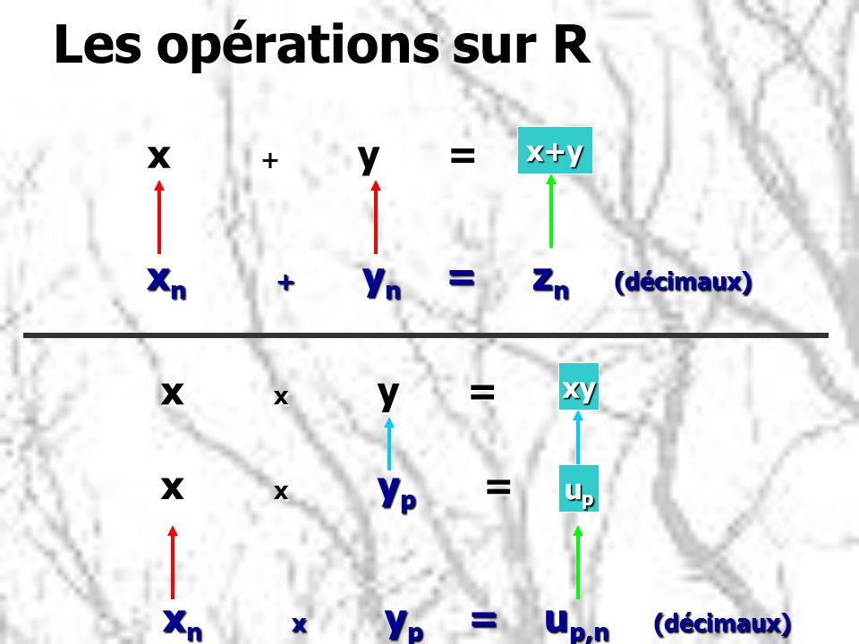Les opérations sur R x + y = xn + yn = zn (décimaux) x x y =