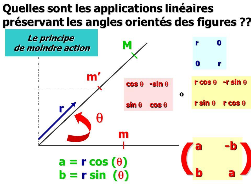 ( ) q Quelles sont les applications linéaires
