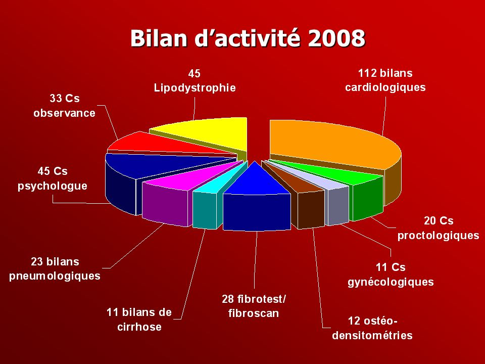 Bilan d'activité 2008