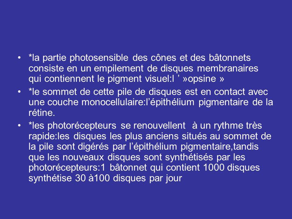 *la partie photosensible des cônes et des bâtonnets consiste en un empilement de disques membranaires qui contiennent le pigment visuel:l ' »opsine »