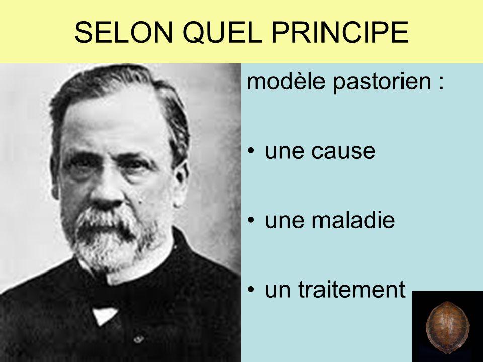 SELON QUEL PRINCIPE modèle pastorien : une cause une maladie