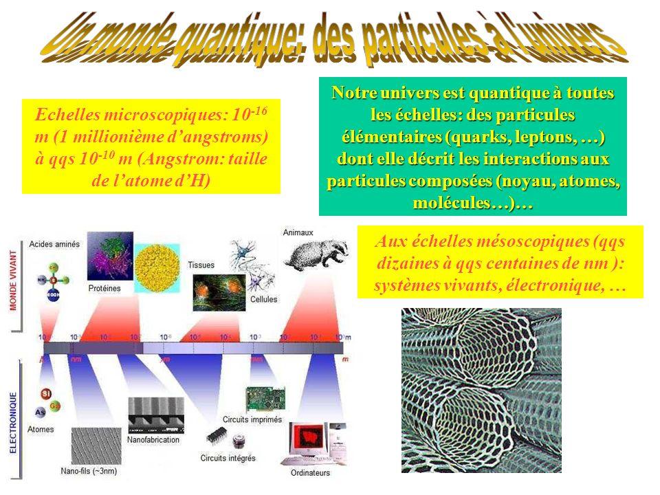 Un monde quantique: des particules à l univers
