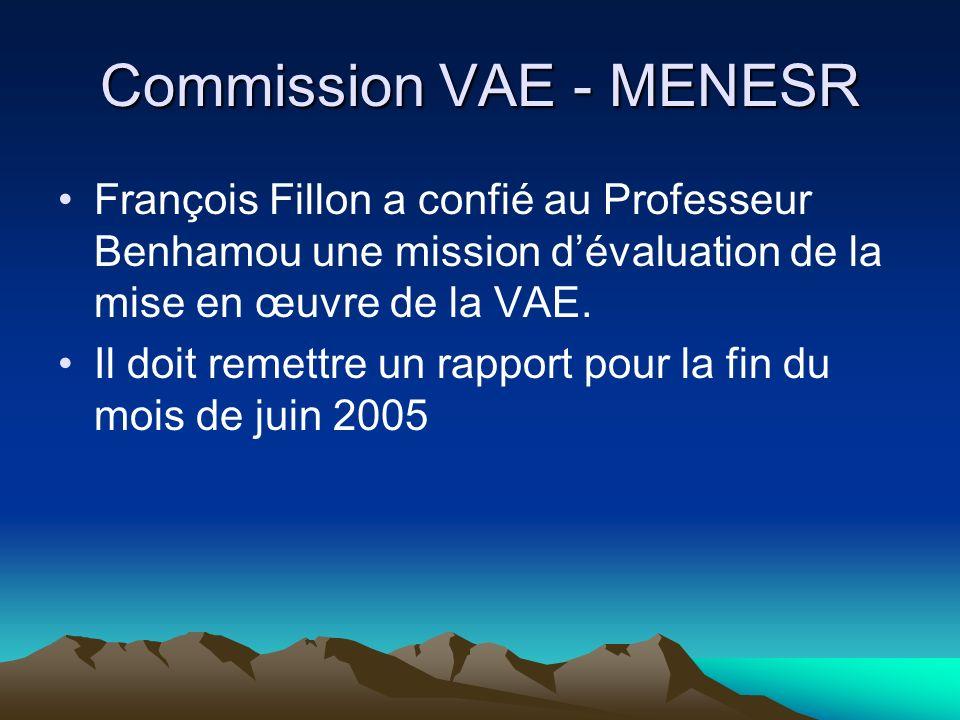 Commission VAE - MENESR