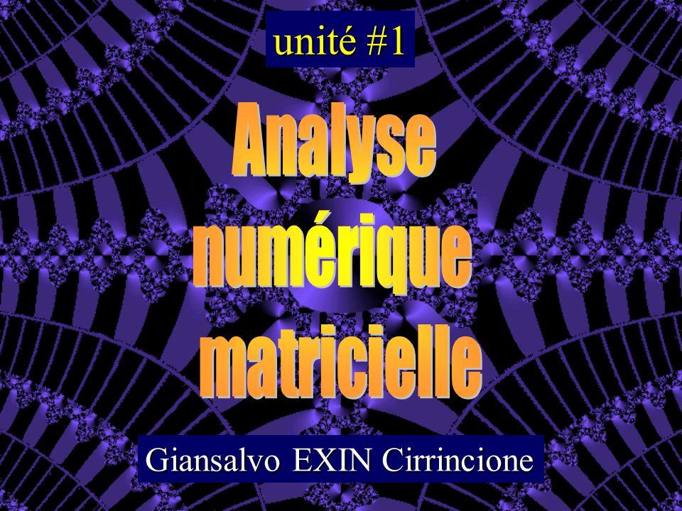unité #1 Analyse numérique matricielle Giansalvo EXIN Cirrincione