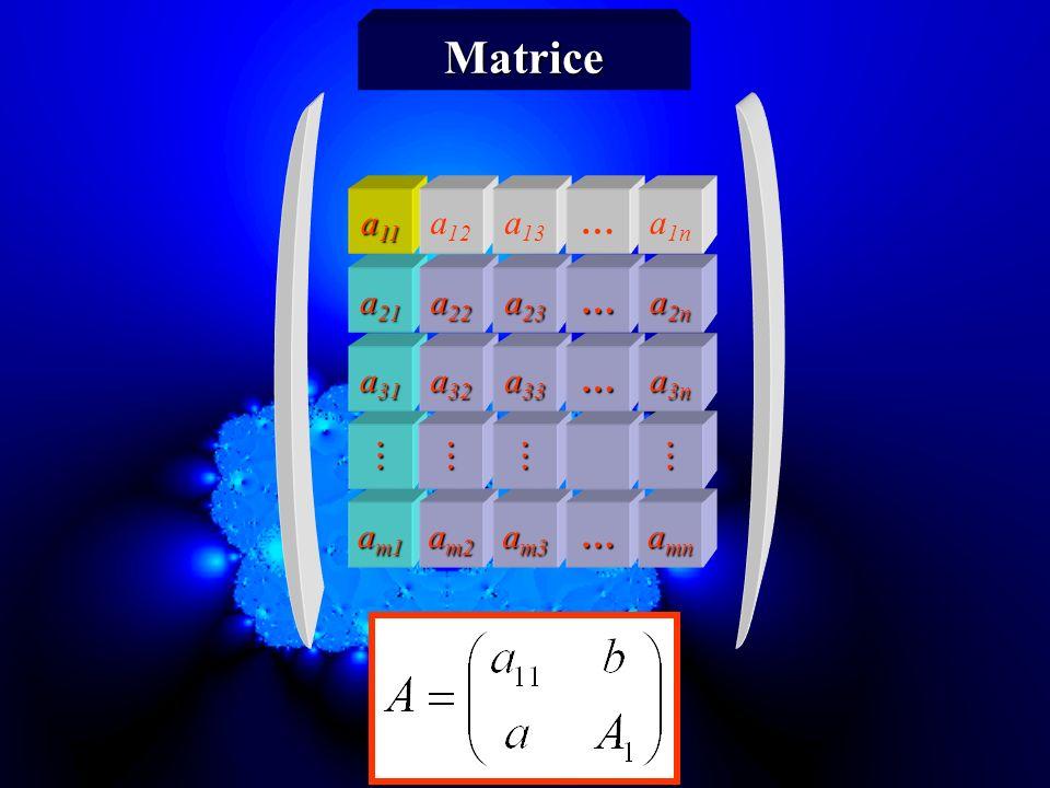 Matrice a11 a12 a13 … a1n a21 a22 a23 … a2n a31 a32 a33 … a3n    