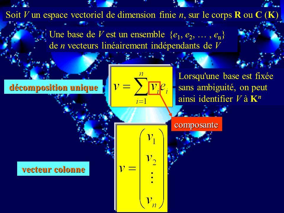 Soit V un espace vectoriel de dimension finie n, sur le corps R ou C (K)