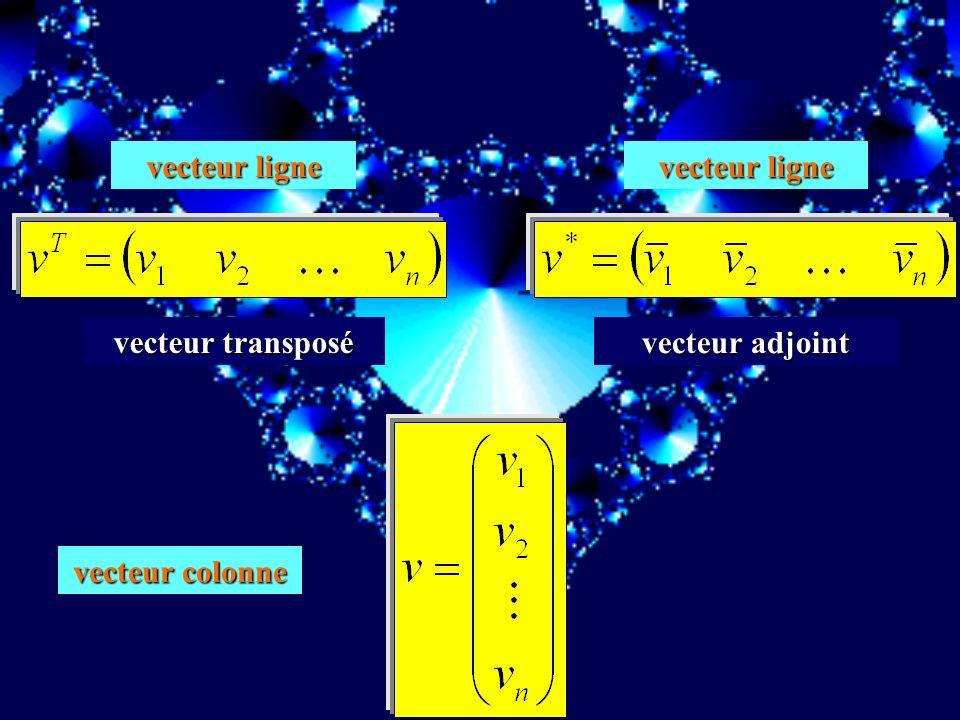 vecteur ligne vecteur ligne vecteur transposé vecteur adjoint vecteur colonne