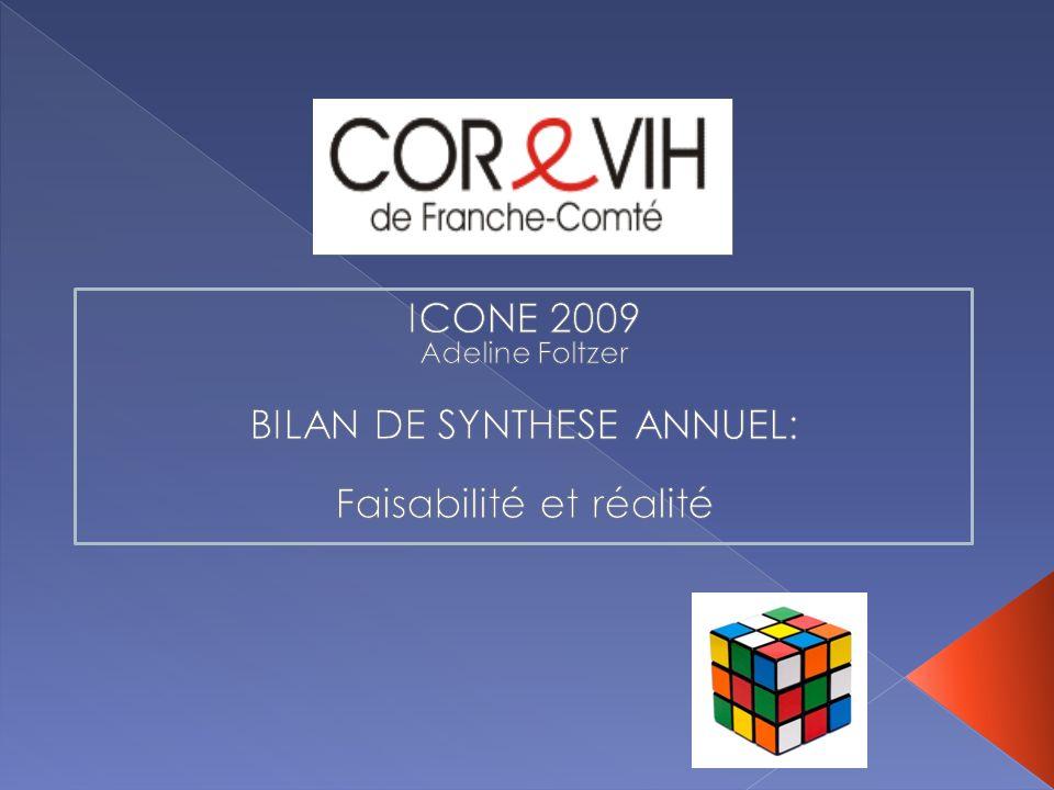 BILAN DE SYNTHESE ANNUEL: Faisabilité et réalité