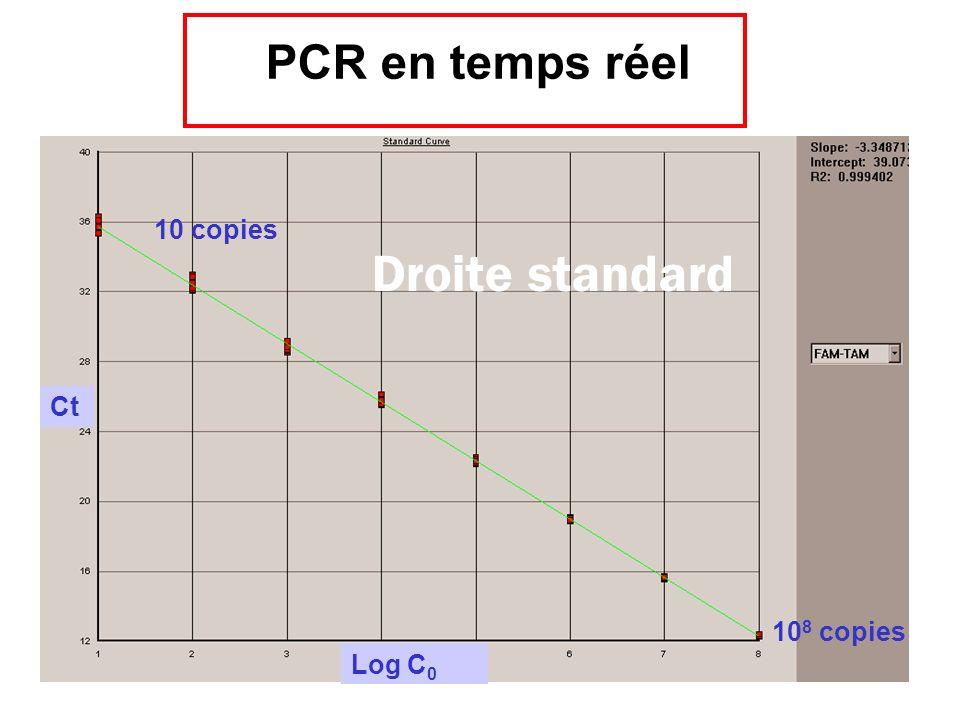 PCR en temps réel Ct Log C0 108 copies 10 copies Droite standard