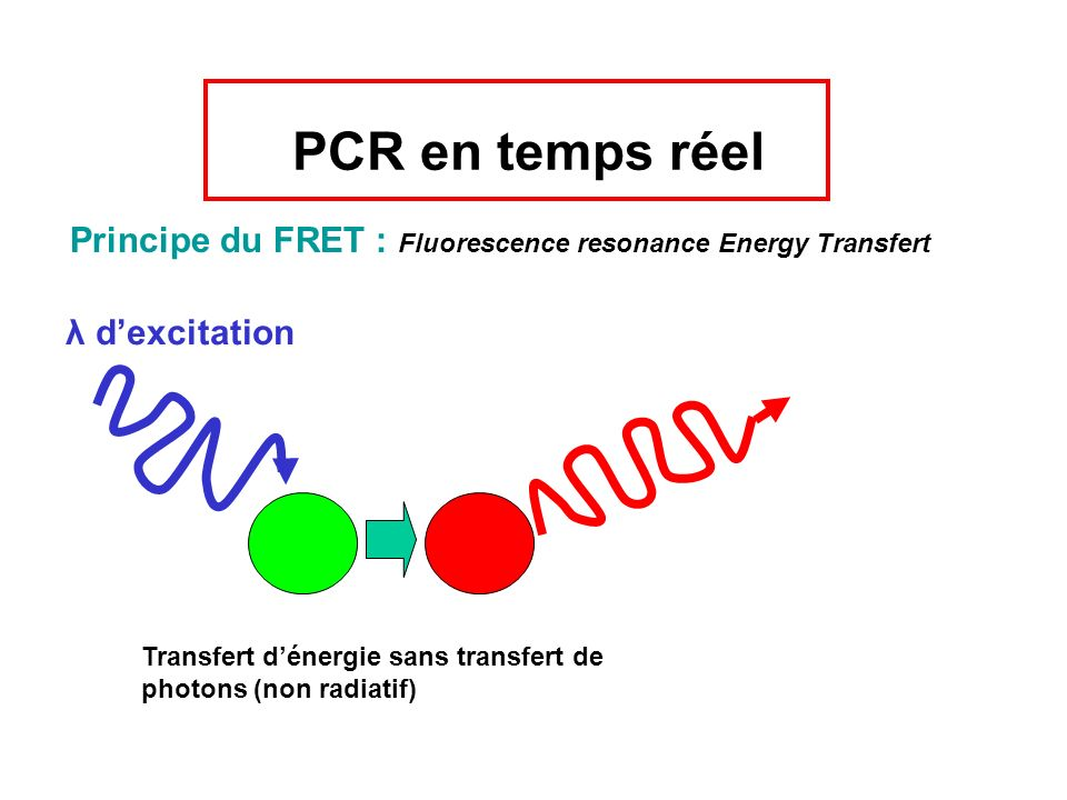 PCR en temps réel Principe du FRET : Fluorescence resonance Energy Transfert. λ d'excitation.