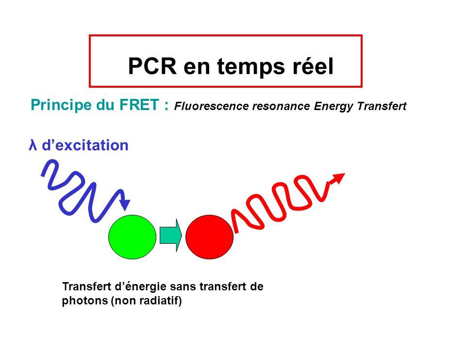 PCR en temps réel Principe du FRET : Fluorescence resonance Energy Transfert. λ d'excitation.