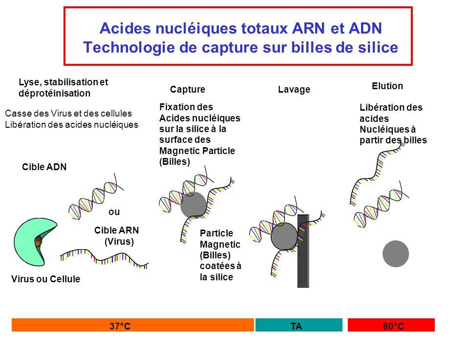 Acides nucléiques totaux ARN et ADN Technologie de capture sur billes de silice