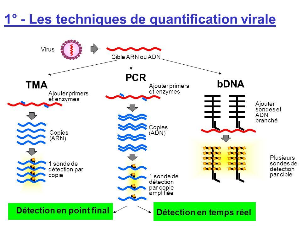 1° - Les techniques de quantification virale