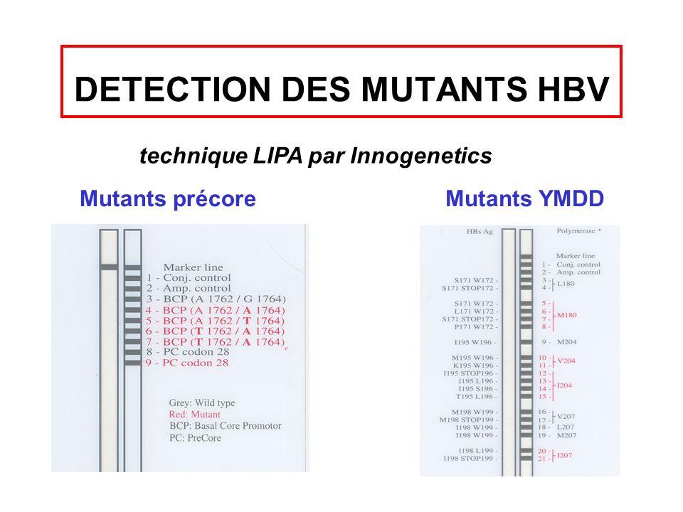 DETECTION DES MUTANTS HBV