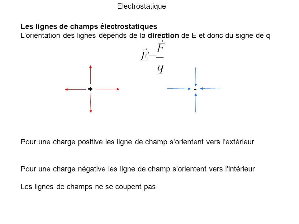 + - Electrostatique Les lignes de champs électrostatiques