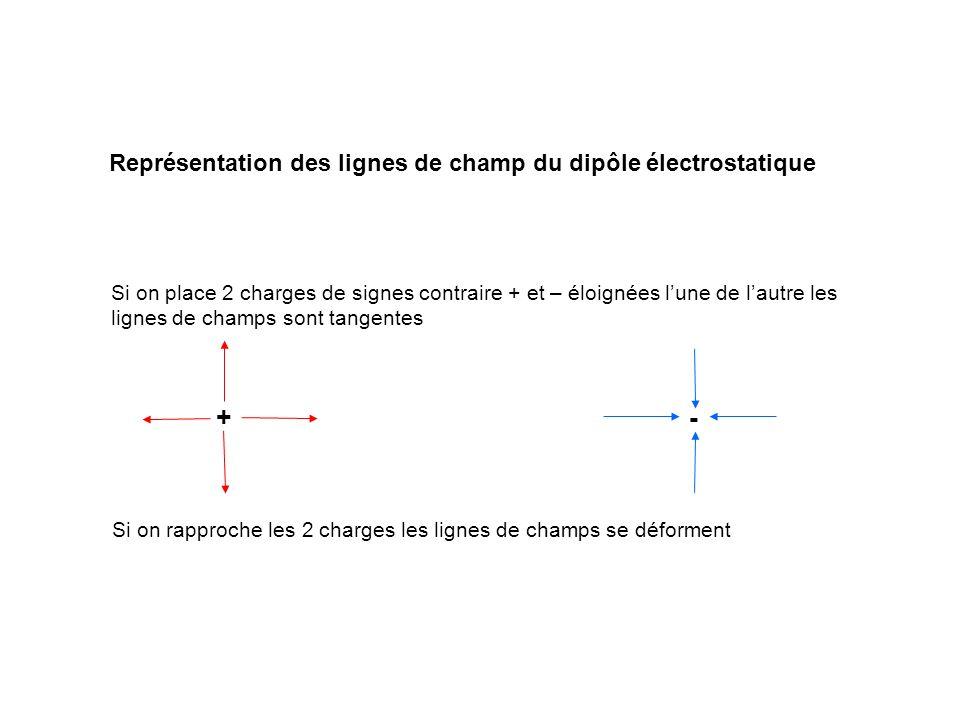 + - Représentation des lignes de champ du dipôle électrostatique