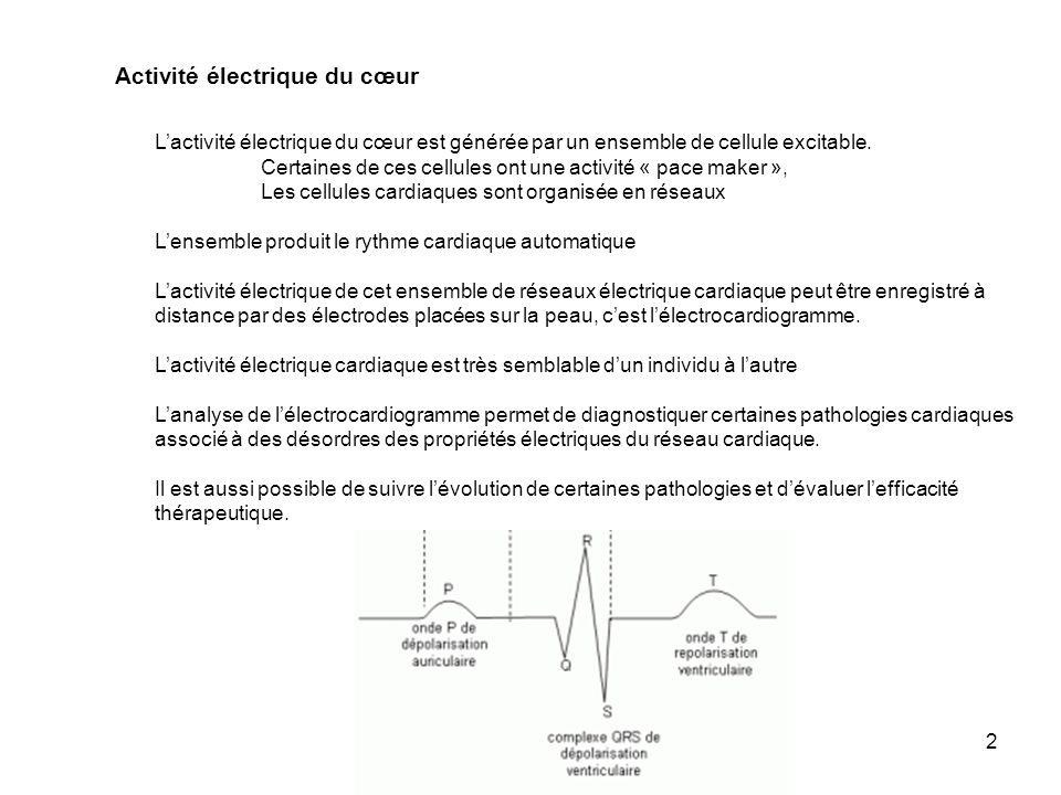 Activité électrique du cœur