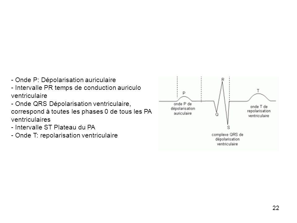- Onde P: Dépolarisation auriculaire