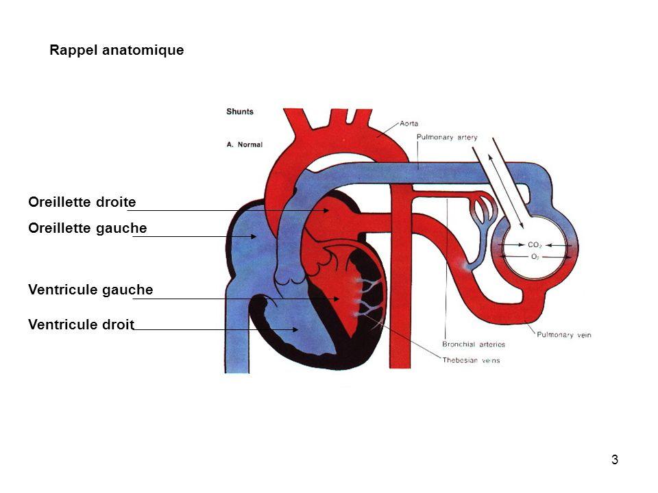 Rappel anatomique Oreillette droite Oreillette gauche Ventricule gauche Ventricule droit