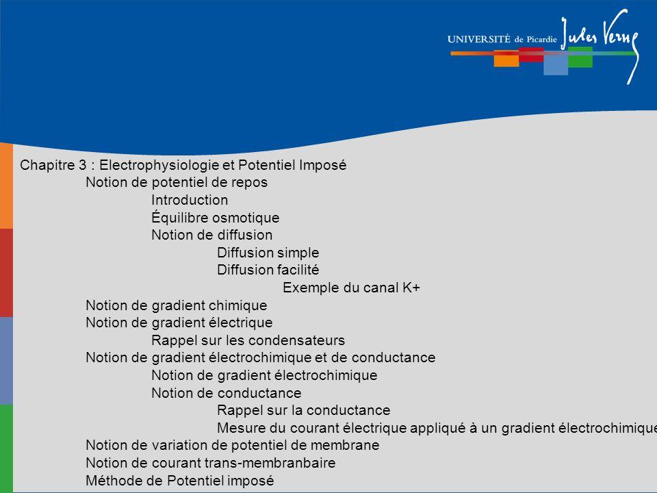 Chapitre 3 : Electrophysiologie et Potentiel Imposé