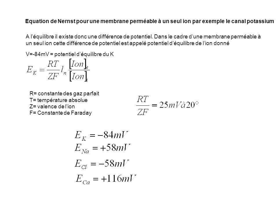 Equation de Nernst pour une membrane perméable à un seul ion par exemple le canal potassium