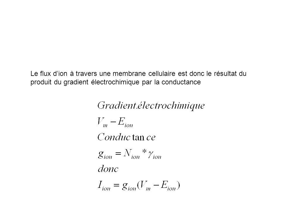 Le flux d'ion à travers une membrane cellulaire est donc le résultat du produit du gradient électrochimique par la conductance