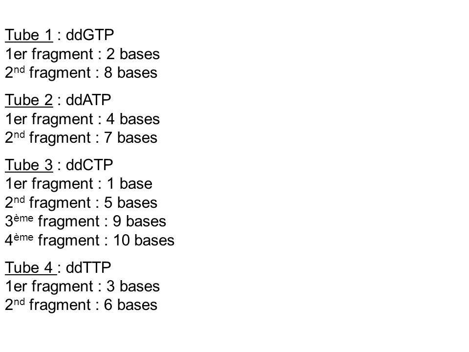 Tube 1 : ddGTP1er fragment : 2 bases. 2nd fragment : 8 bases. Tube 2 : ddATP. 1er fragment : 4 bases.