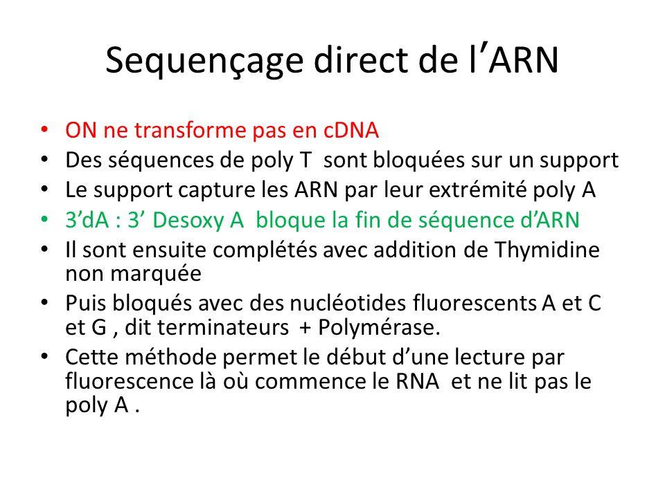 Sequençage direct de l'ARN
