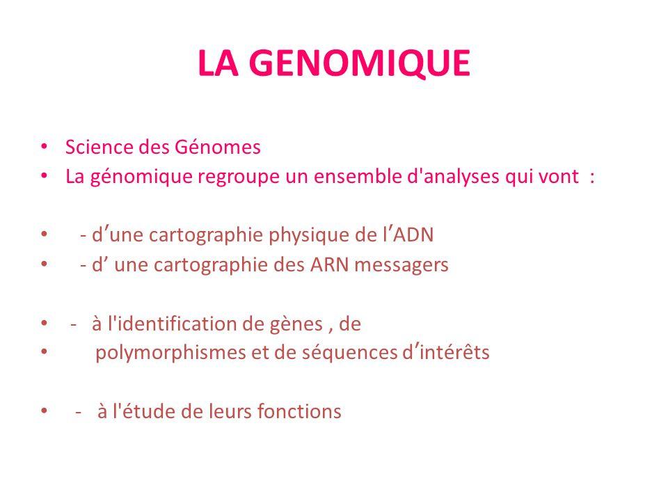 LA GENOMIQUE Science des Génomes