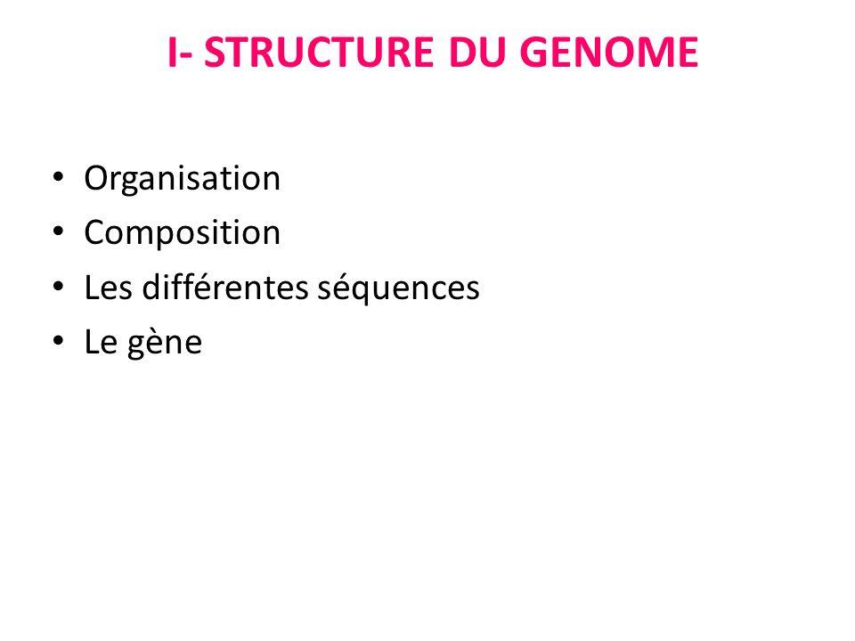 I- STRUCTURE DU GENOME Organisation Composition