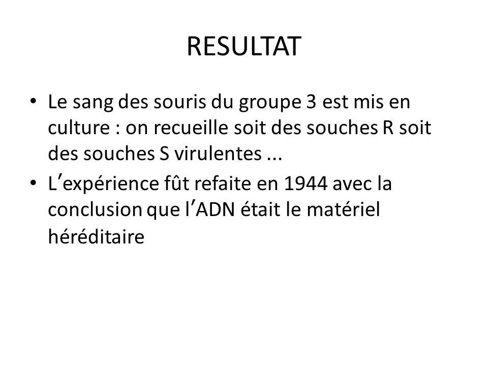 RESULTAT Le sang des souris du groupe 3 est mis en culture : on recueille soit des souches R soit des souches S virulentes ...