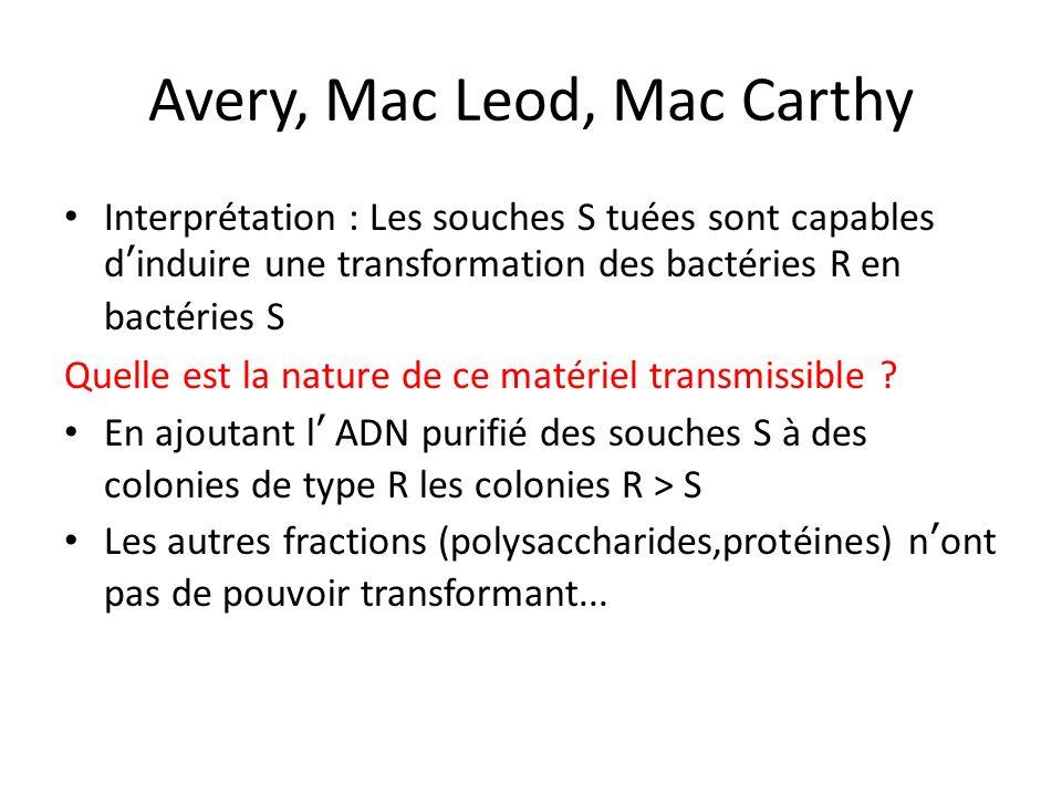 Avery, Mac Leod, Mac Carthy