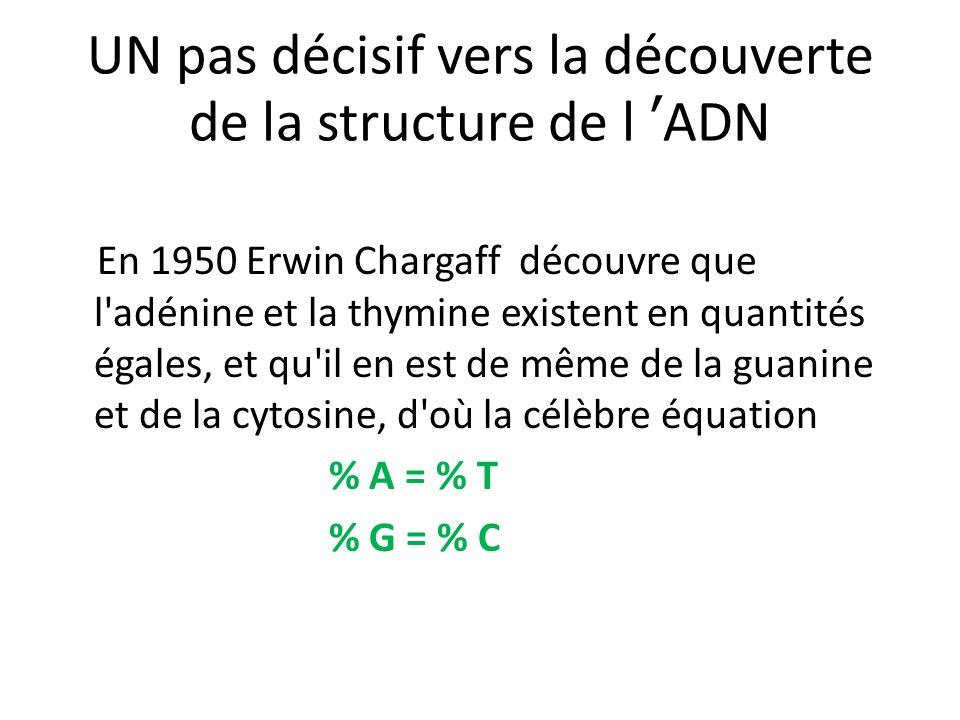 UN pas décisif vers la découverte de la structure de l 'ADN