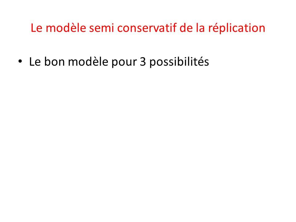 Le modèle semi conservatif de la réplication