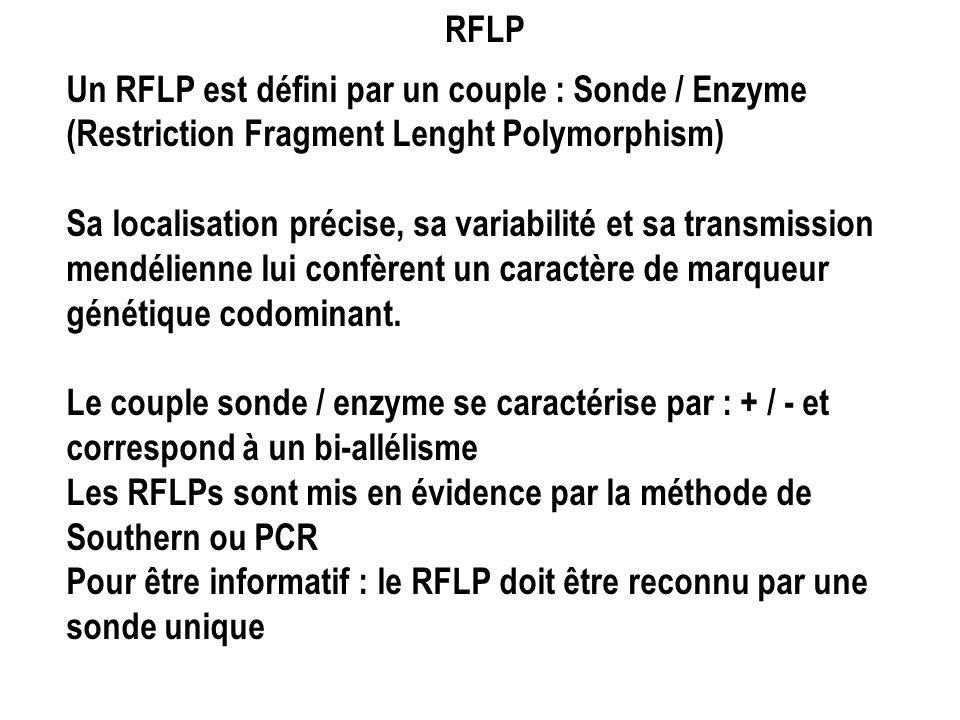 RFLP Un RFLP est défini par un couple : Sonde / Enzyme. (Restriction Fragment Lenght Polymorphism)