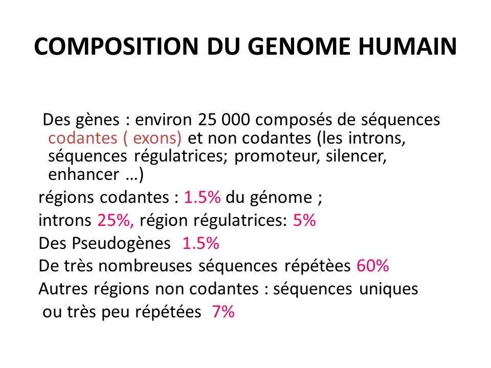 COMPOSITION DU GENOME HUMAIN