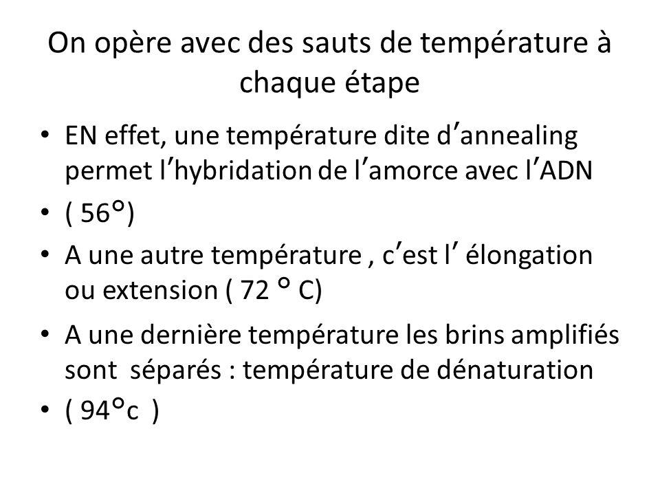 On opère avec des sauts de température à chaque étape