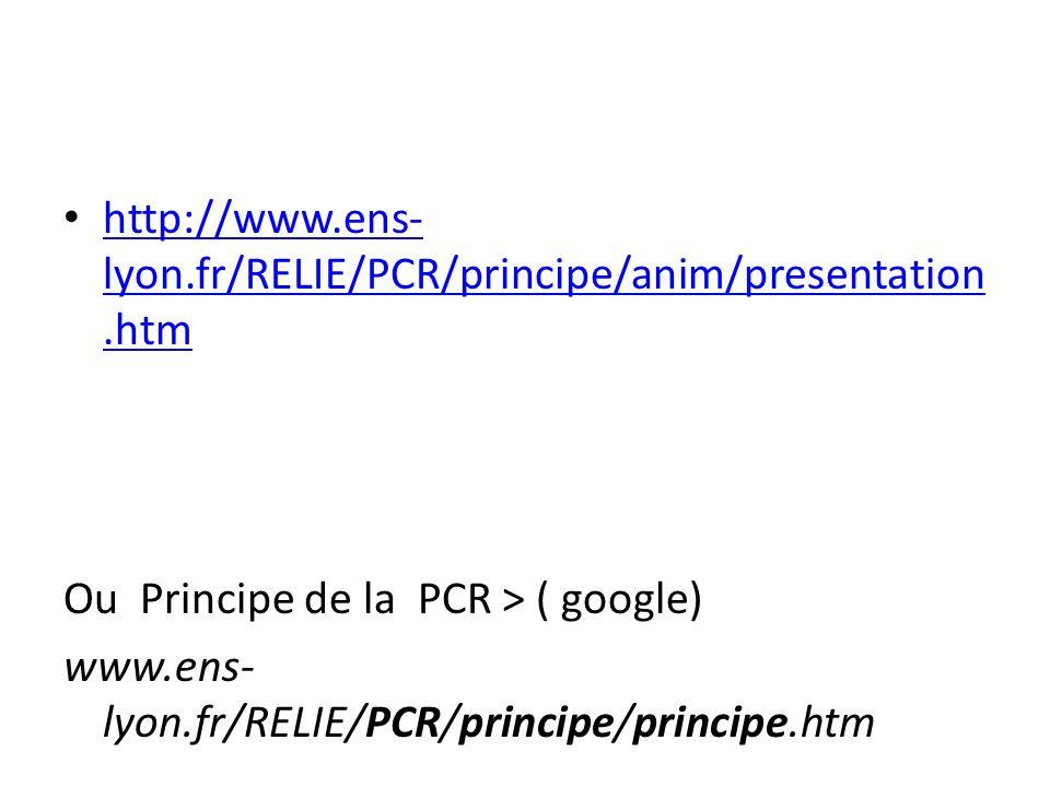 http://www.ens-lyon.fr/RELIE/PCR/principe/anim/presentation.htmOu Principe de la PCR > ( google) www.ens-lyon.fr/RELIE/PCR/principe/principe.htm.