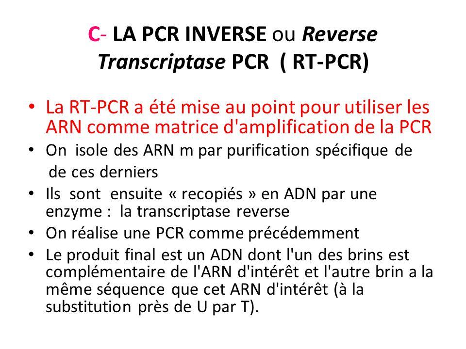 C- LA PCR INVERSE ou Reverse Transcriptase PCR ( RT-PCR)