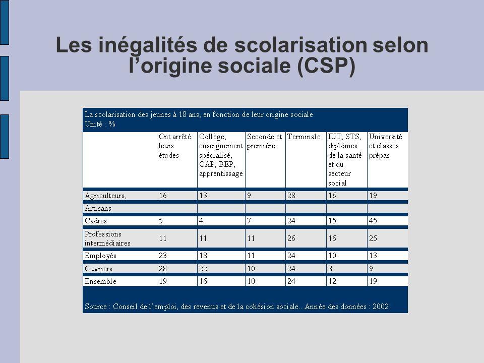 Les inégalités de scolarisation selon l'origine sociale (CSP)