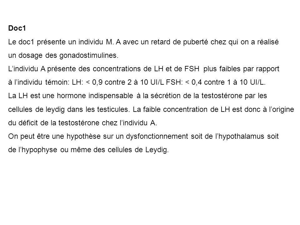 Doc1 Le doc1 présente un individu M. A avec un retard de puberté chez qui on a réalisé. un dosage des gonadostimulines.