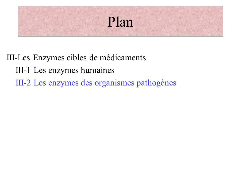 Plan III-Les Enzymes cibles de médicaments III-1 Les enzymes humaines