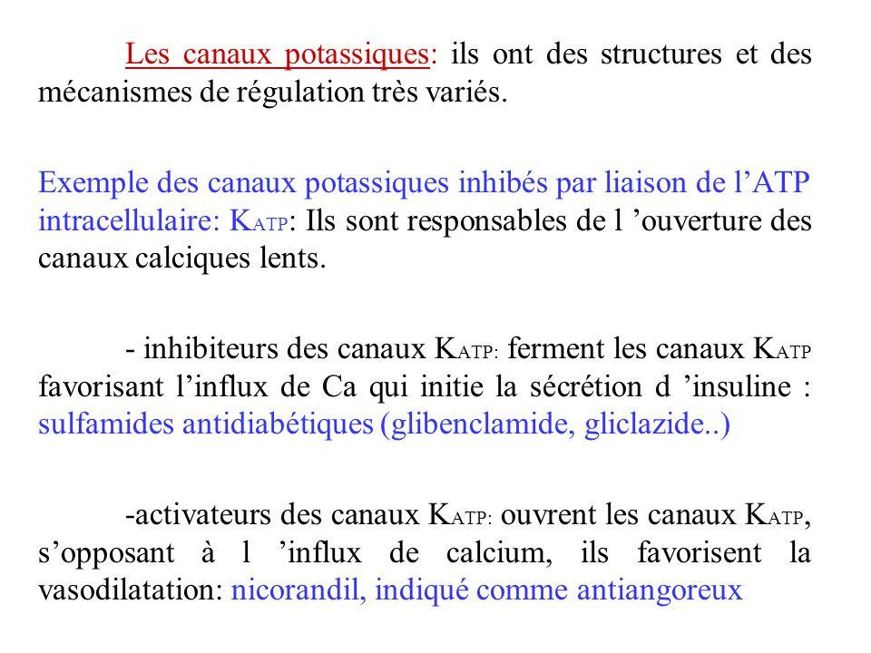 Les canaux potassiques: ils ont des structures et des mécanismes de régulation très variés.