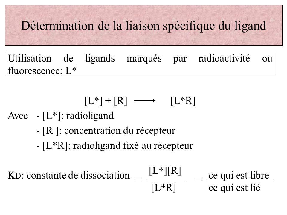 Détermination de la liaison spécifique du ligand