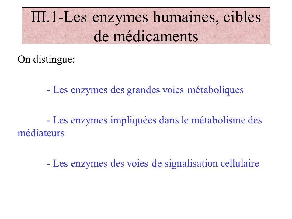 III.1-Les enzymes humaines, cibles de médicaments