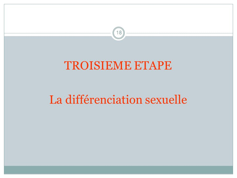 La différenciation sexuelle