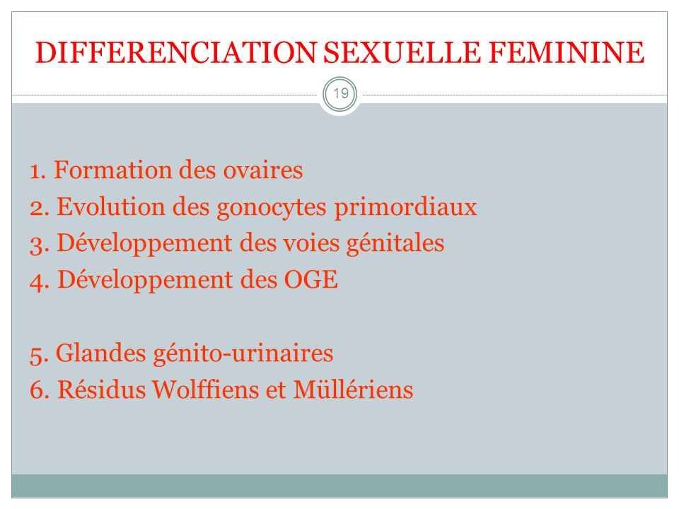 DIFFERENCIATION SEXUELLE FEMININE